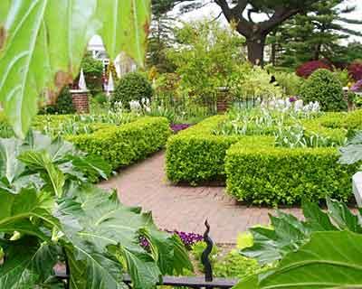 Jard n bot nico for Que es un jardin ornamental
