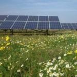 ¿Será esta la granja solar más ecológica de todas?