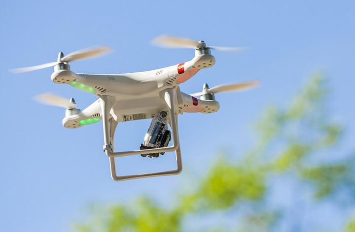 Drones pueden ayudar a los bosques