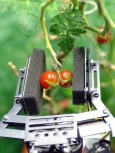 Robots se ocuparán de la agricultura