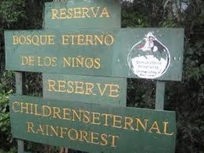 bosque protegido