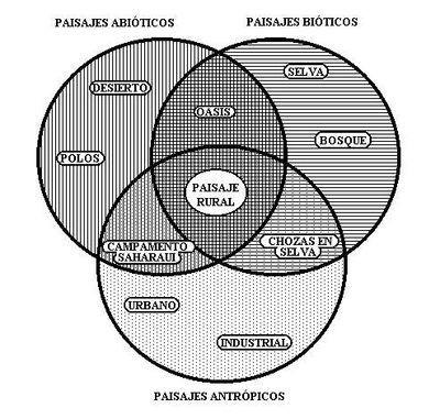 Elementos básicos del paisaje