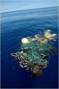 Los plásticos y los pescados