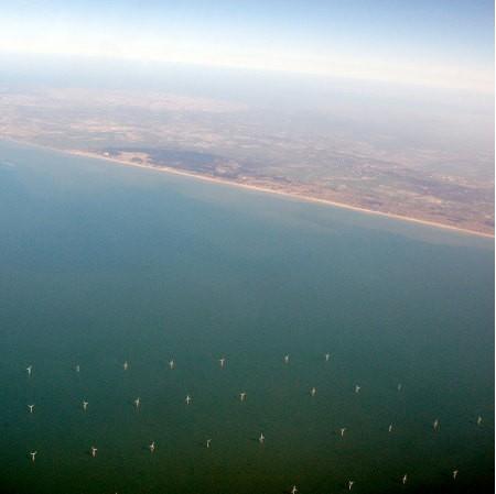 Las granjas eólicas costa afuera aumentan la biodiversidad