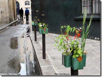 Pequeños jardines en postes parisinos