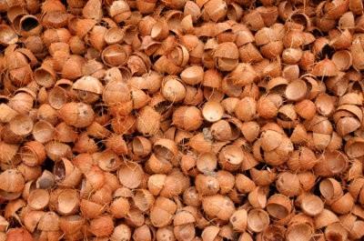 Hora de usar cáscara de cocos para reforzar el plástico