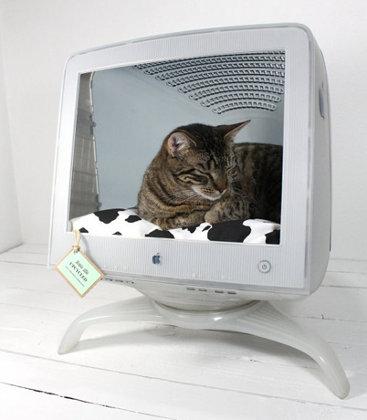 Vieja computadora Mac reciclada