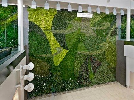 Aeropuerto de Edmonton revela una hermosa pared cubierta de plantas que sirve para purificar el aire