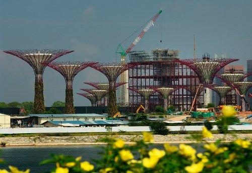 Árboles solares gigantes serán inaugurados a fin de mes en Singapur2