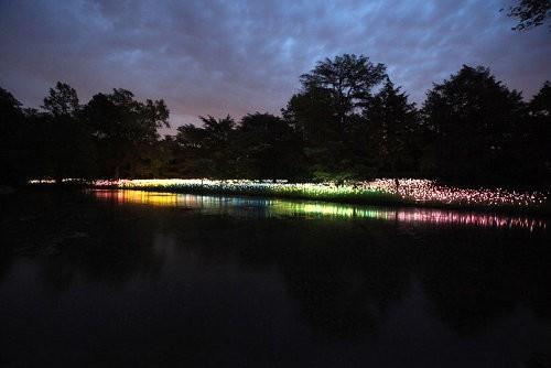 El jardín de flores LED de Bruce Munro2