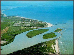 estuario