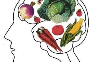 Información Vegetariana