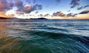 Acidificación de océano