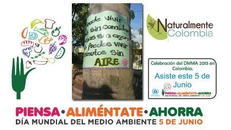 Día Mundial del Medio Ambiente 20135