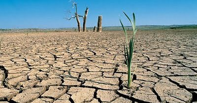 Día Mundial de la Lucha contra la Desertificación y la Sequía