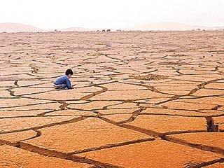Imágenes del Día Mundial de la Lucha contra la Desertificación y la Sequía