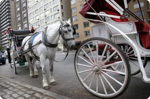Los carros de caballos de Central Park serán reemplazados por autos eléctricos