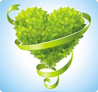 Ideas para citas ecológicas de San Valentín