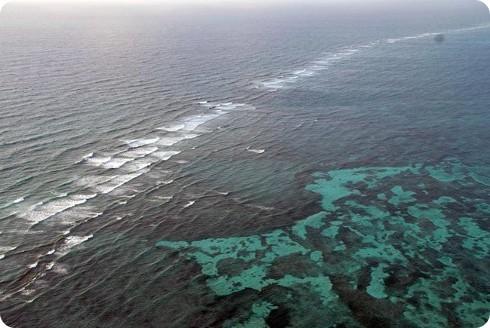 La protección que brindan los arrecifes de coral