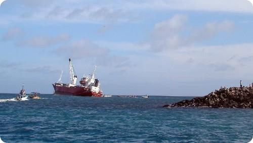 Las islas Galápagos corren peligro