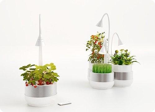 SproutsIO: un sistema de microgranjas para plantar en espacios pequeños