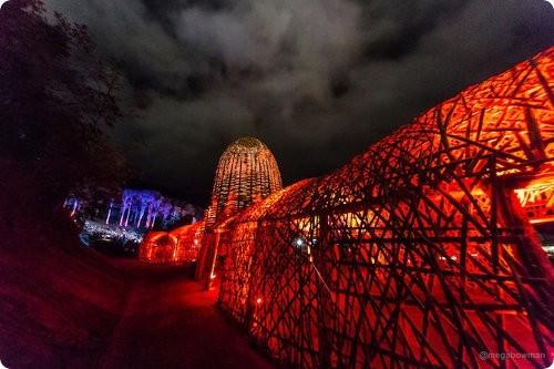 Artistas crean un genial túnel de bambú