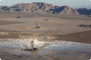 El problema de los pájaros y los paneles solares