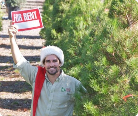 Una compañía de California alquila árboles para Navidad