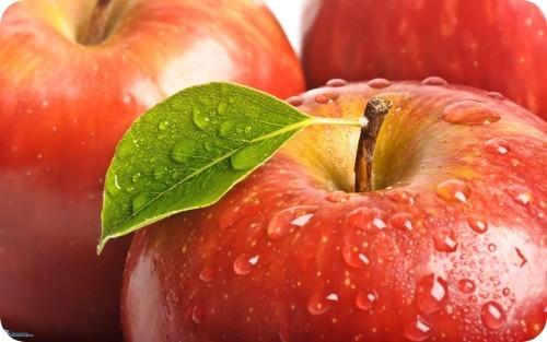 el-gobierno-de-los-estados-unidos-aprueba-la-plantacion-de-arboles-de-manzana-modificadas