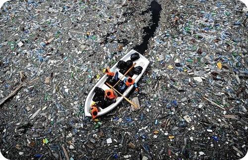 nuevo-estudio-revela-el-aumento-de-los-residuos-de-plasticos-en-nuestros-mares