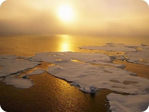 cumbre-mundial-del-clima-y-los-territorios-comenzara-en-julio