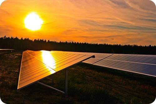 combustibles renovables