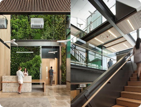 Nueva Zelanda tiene un genial centro médico ecológico: el Kathleen Kilgour