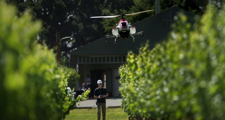 Drones ayudan a la reforestación masiva
