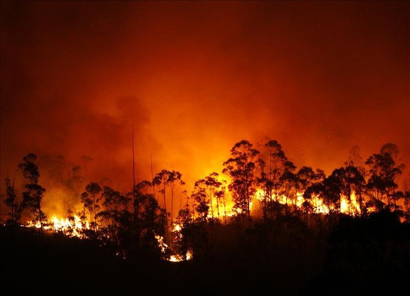 Incendios forestales en España