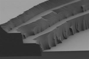 Desarrollo: Material que almacena la energía solar