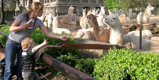 El zoológico de Capital Federal cierra
