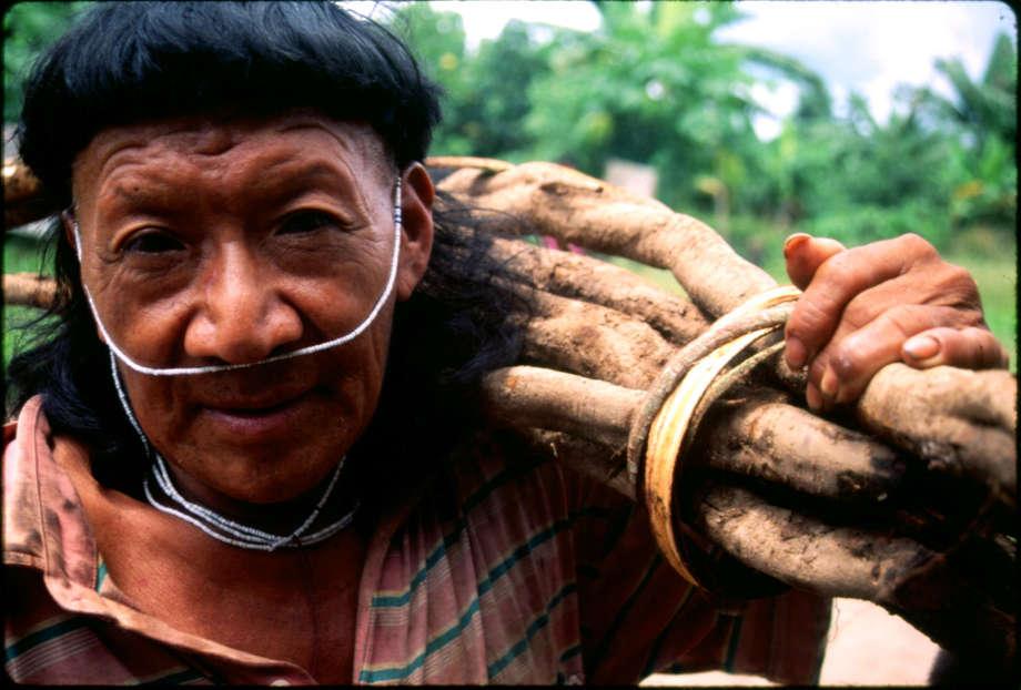 Tribus indígenas estan siendo envenenadas