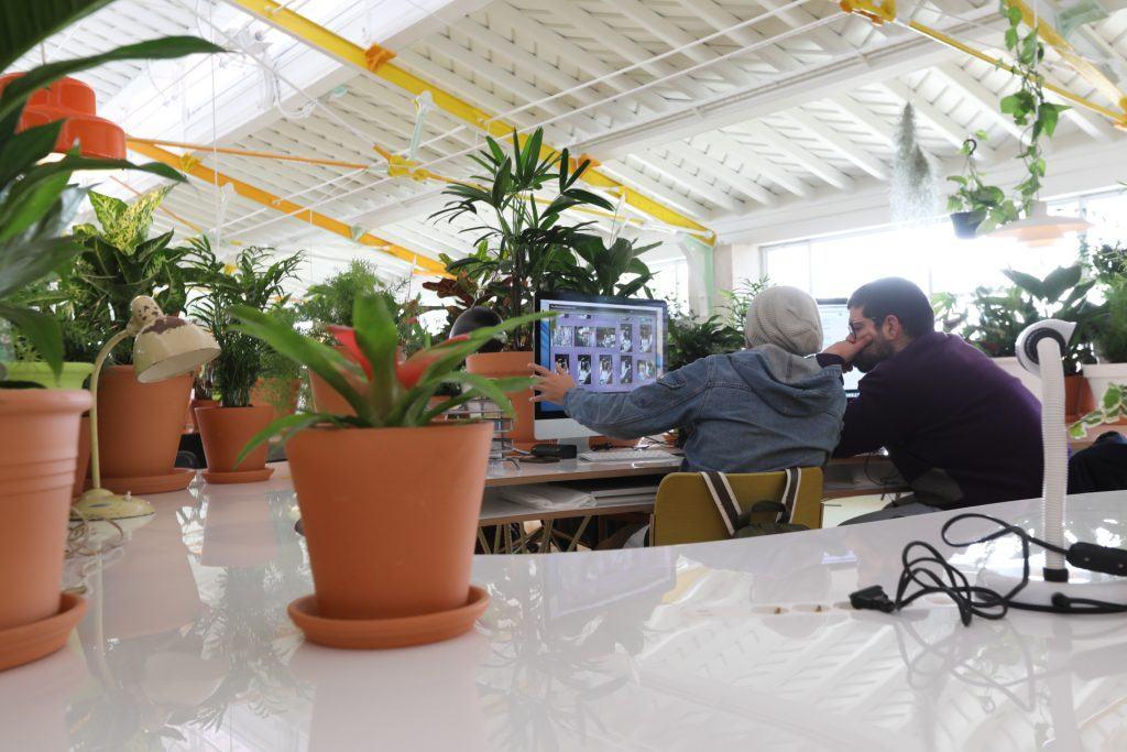 plantas para un ambiente de trabajo diferente