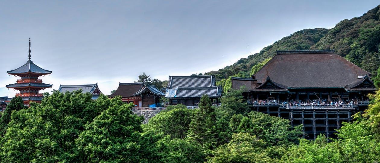 Templos y casas en Japón, rodeados de una amplia mata verde