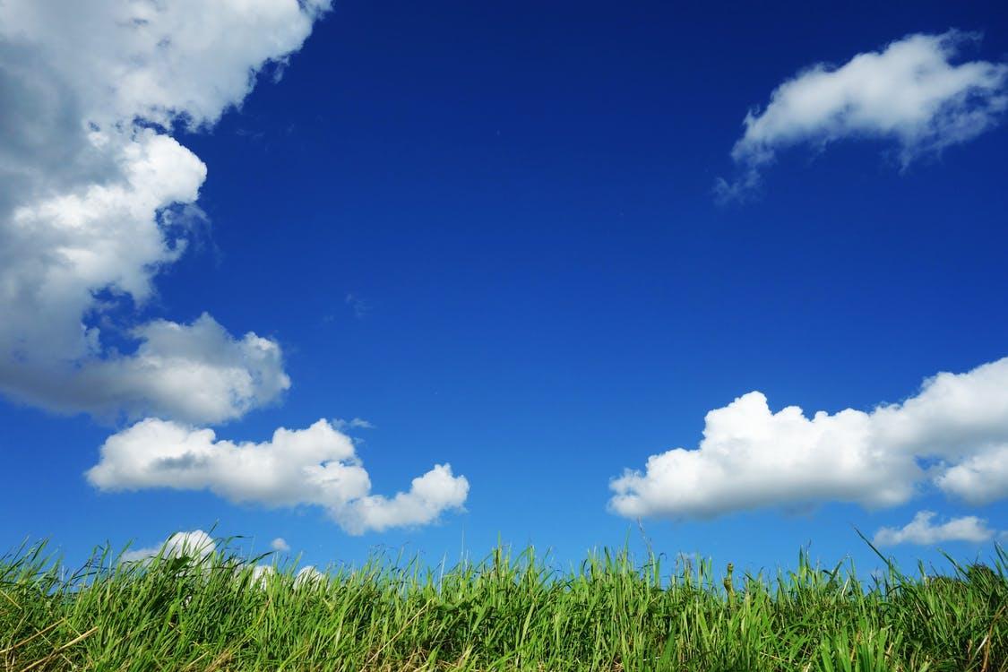 Nubes blancas y cielo azul, mirados atentamente por un verde pasto que crece desde el suelo, otra de las fotos de paisajes naturales más hermosos