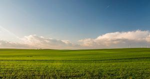 Verdes praderas junto a un cielo azul, en el fondo la energía eólica trabajando sin contaminación