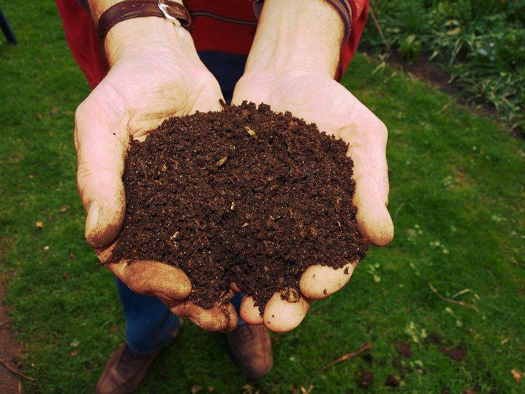 abono orgánico listo para usar
