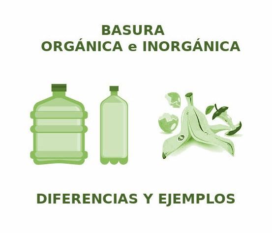 basura organica e inorganica