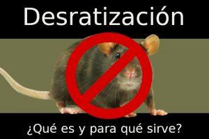 qué es la desratización y para qué sirve